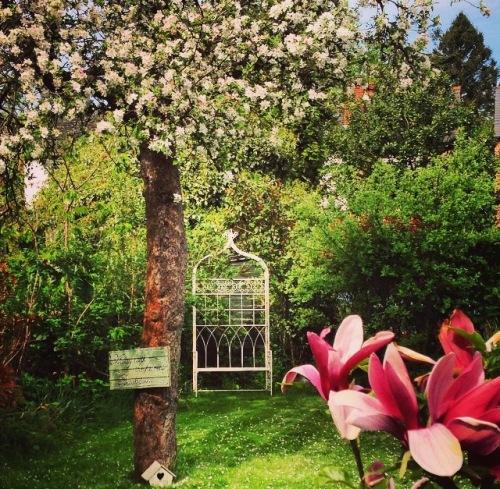 garden 4 copy